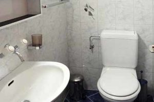 Appartement-Nendaz-toilettes-500x375